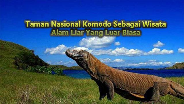Taman Nasional Komodo Sebagai Wisata Alam Liar Yang Luar Biasa
